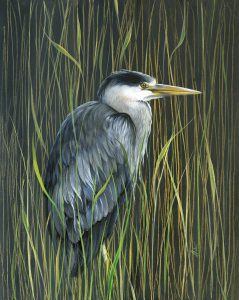 painting of Heron by Lorraine Auton
