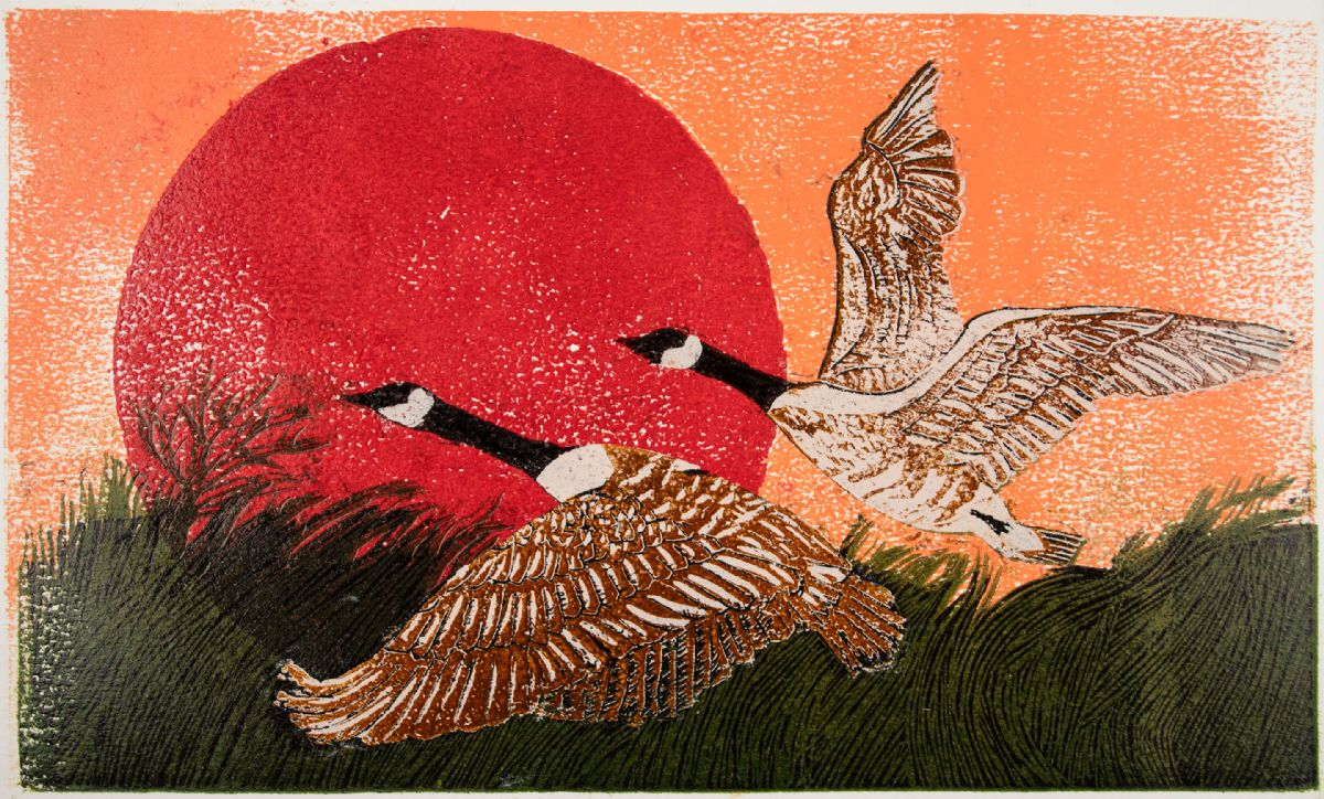 print of canadian geese over red sun