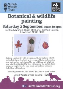 Botanical & WIldlife Painting Poster
