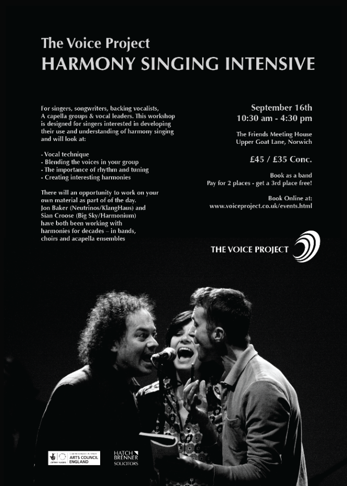 The VOice Project poster