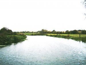 River Landscapes Line-up