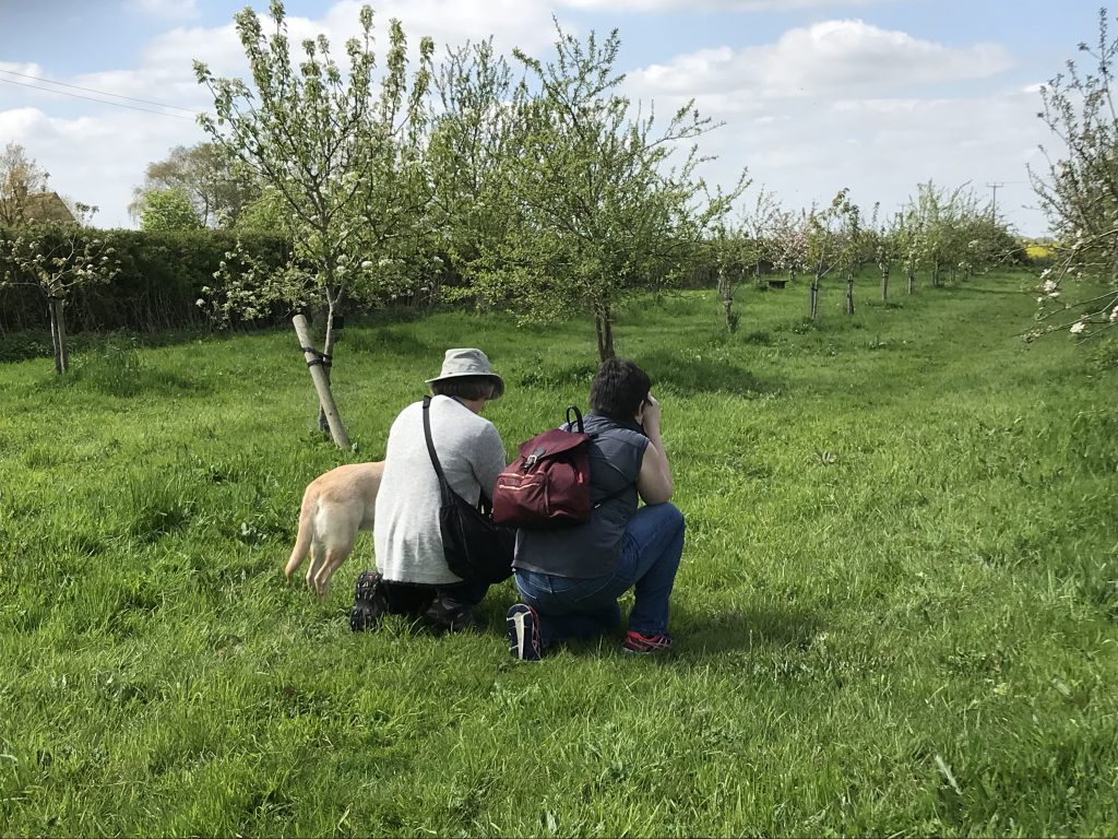 2 people taking photos at St James Village Orchard
