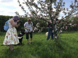 EffStopEyes taking pics of blossom