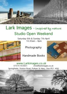 Lark Images open studios
