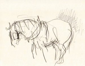 Pencil Drawing of Suffolk Punch