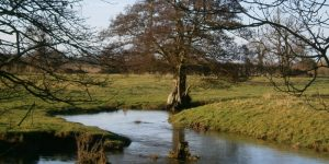 The curve of the river Dove in water meadows