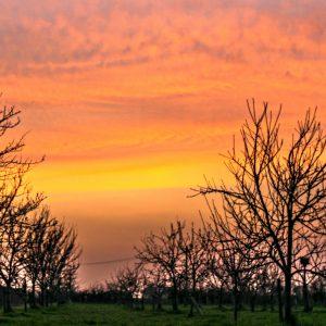 Sunset 02 140418